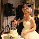 Молодожёны отрезают первый  кусочек торта